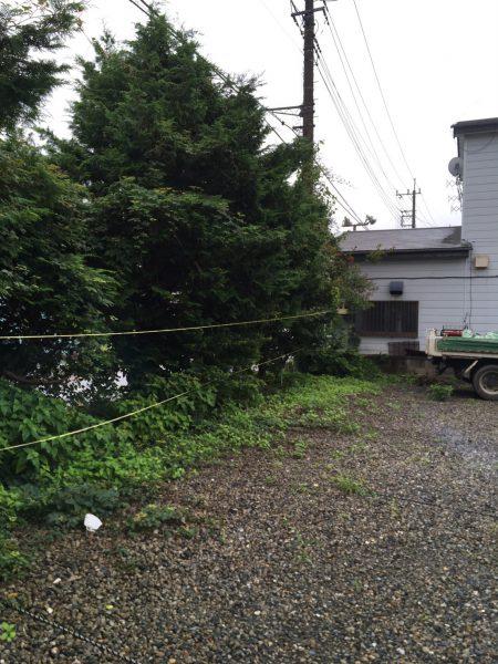 岩槻区 植栽CB撤去工事を行いました。