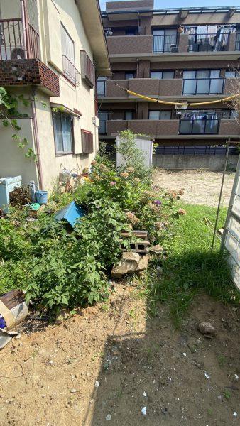 市川市南八幡 植栽撤去を行いました。
